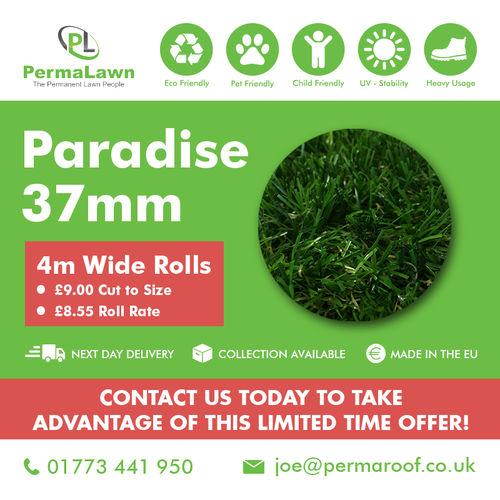 Paradise 37mm