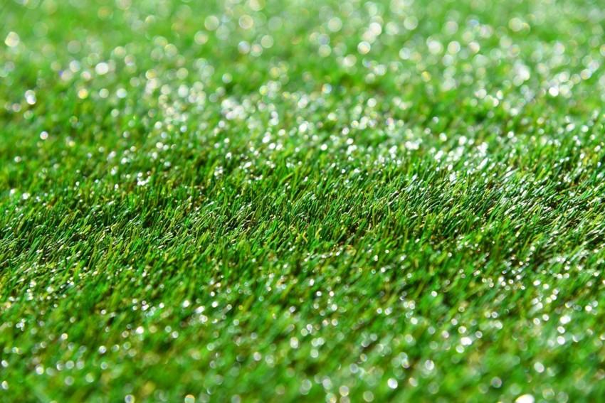 Autumn Sale of Artificial Grass - 20% Off