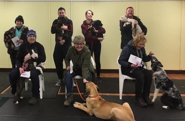 Puppy Foundation course October/November 2019  Register now  mograham51@btinternet.com