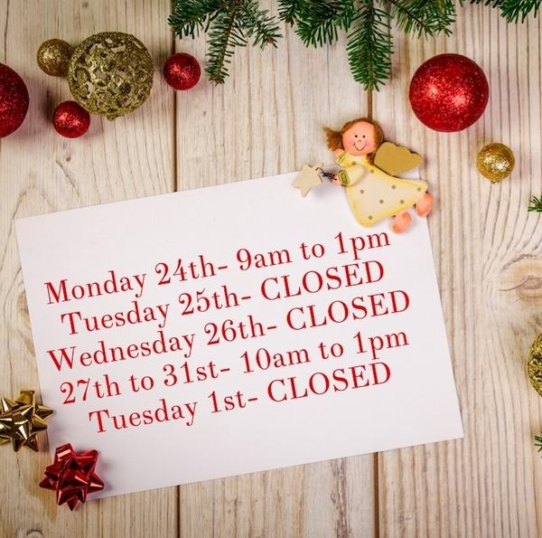 Weekly Bulletin / Programming- Christmas