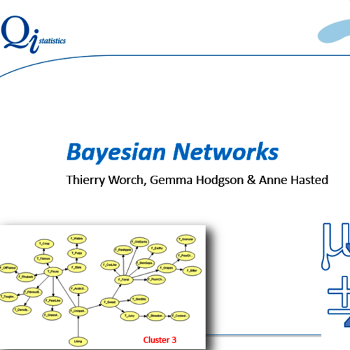 Bayesian Networks Webinar (Access to recording only)