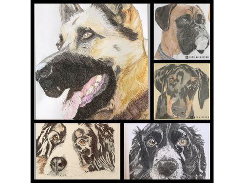 Nicks Hand Drawn Pet Portraits