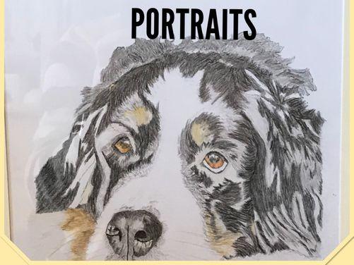 Nicks Hand Drawn Pet Portraits