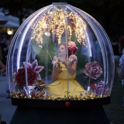 Enchanted Globes