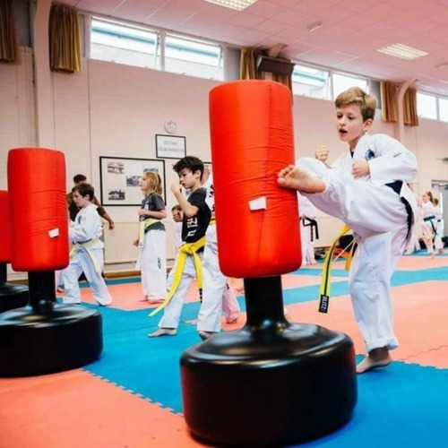 Martial Arts for children 9 years + - Kent, Surrey and Sussex