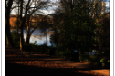 Arboretum Road, Walsall