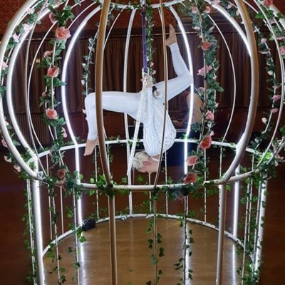 Giant Bird Cage Aerialist Hoop Prop UK Garden Entertainment