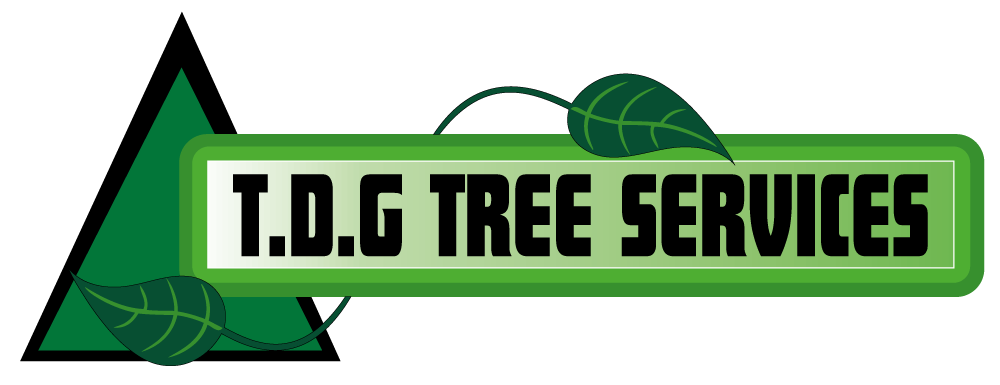 TDG Tree Services | Tree Services Isle of Wight | Tree Cutting Isle of Wight | Tree Surgery Isle of Wight