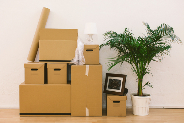 Planning a Stress-Free House Move