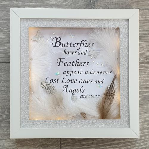 butterflies & feathers frame