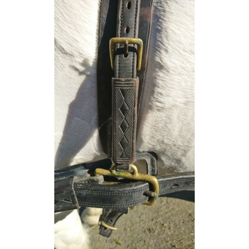 English leather/brass Pair harness ref (782607)