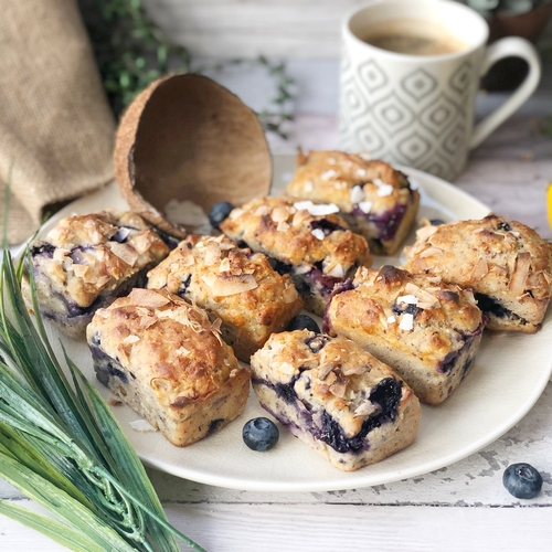 Blueberry Mini Loaves