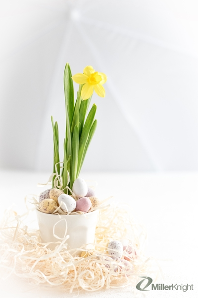 Happy Easter from all at Miller Knight!