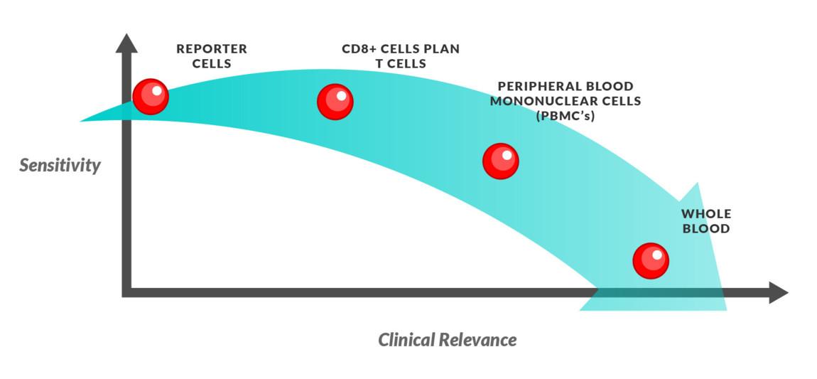 Effector cells