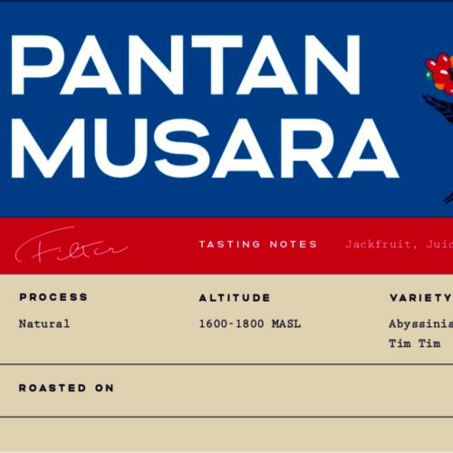Pantan Musara