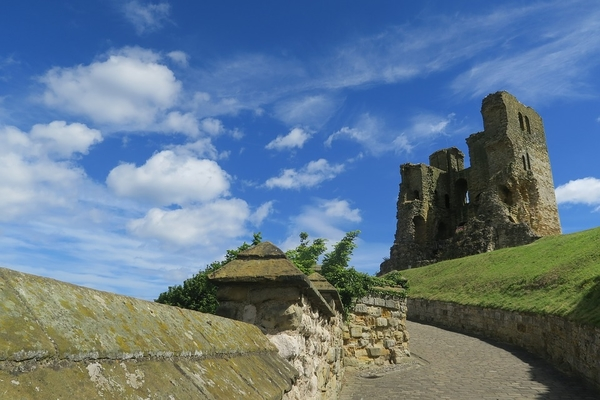 4 Dog Friendly Castles to Visit in North Yorkshire