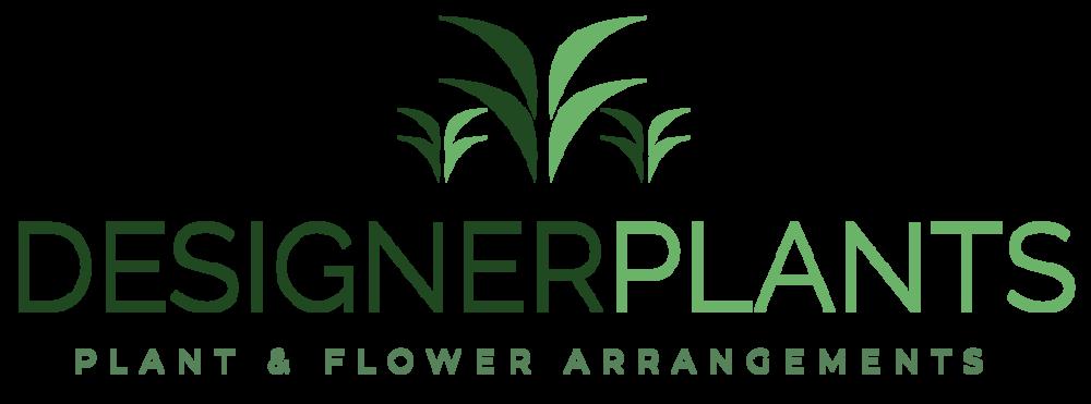 Designer Plants | Office Plants London | Office Flowers London | Flowers London