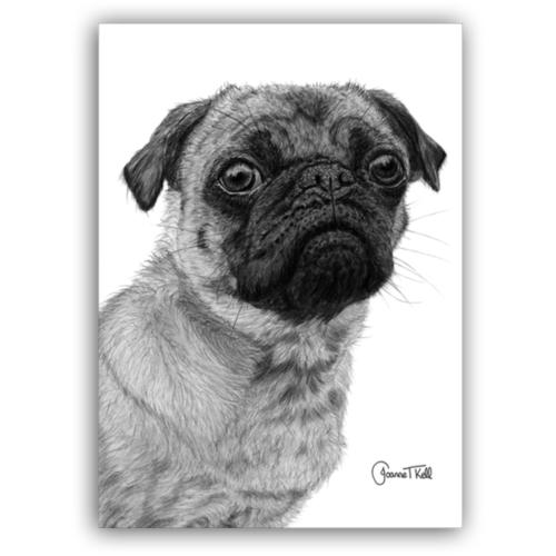 Joanne T Kell Pug Greeting Card
