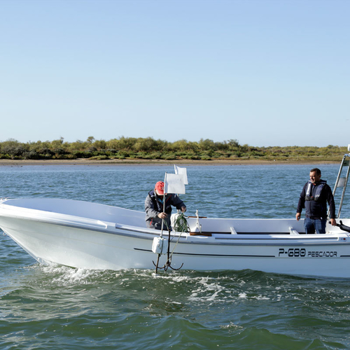 Dipol P-680 FOREÑO & SPORT FISHER - POA