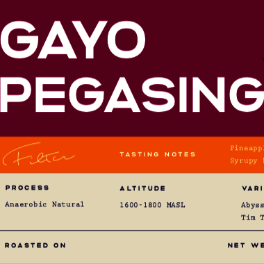 Gayo Pegasing Anaerobic Natural