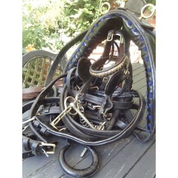 English leather/brass pony ref (794310)