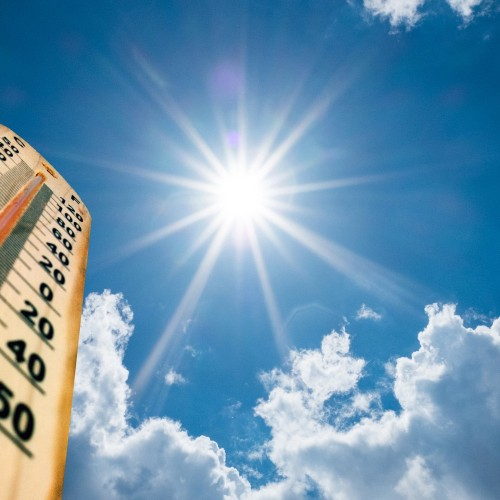 Heatwave Information and Advice