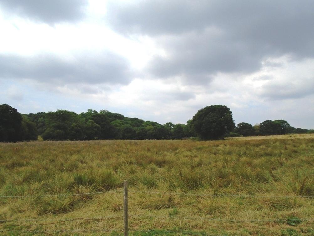 Mwrwg Road, Llangennech, Llanelli