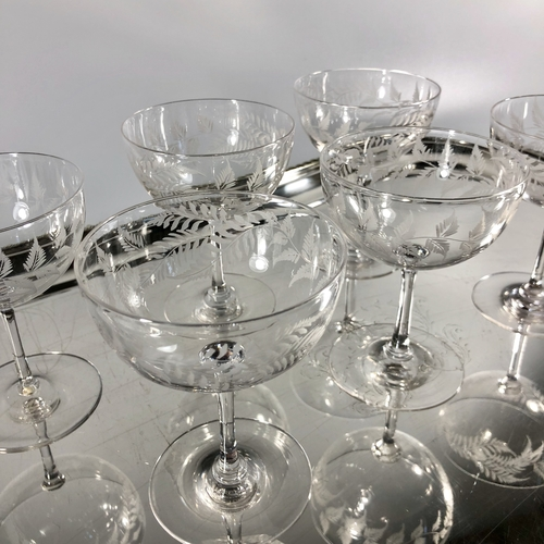 Fern etched deep bowl champagne or cocktail coupes