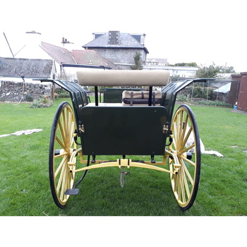 1903 Ralli 14.2-15hh ref (799079)
