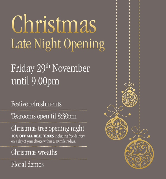 Christmas Late Night Opening 29th Of November 2019