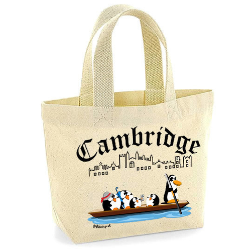 'Punting in Cambridge' Mini Tote