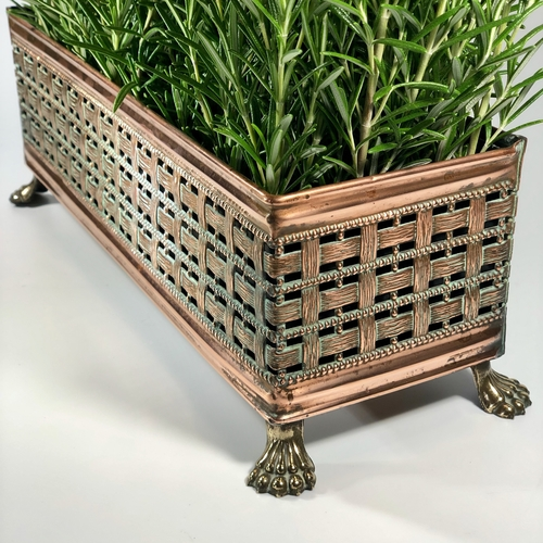 Woven copper jardiniere planter with brass lion's paw feet