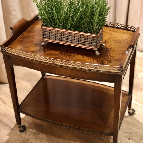 Mahogany and brass gallery serving tray and trolley