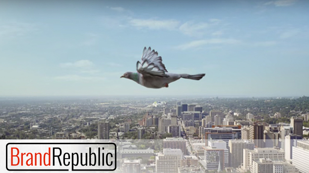 JetBlue's New Ad Campaign Takes Flight