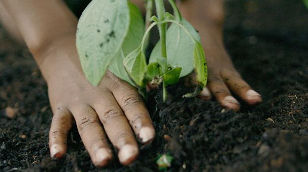 Bringing Environmentalism To 'Dirt Is Good'