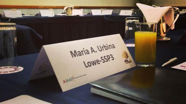 Maria Alejandra Urbina, Directora de Planning de Lowe SSP3 es jurado en los Effies Globales