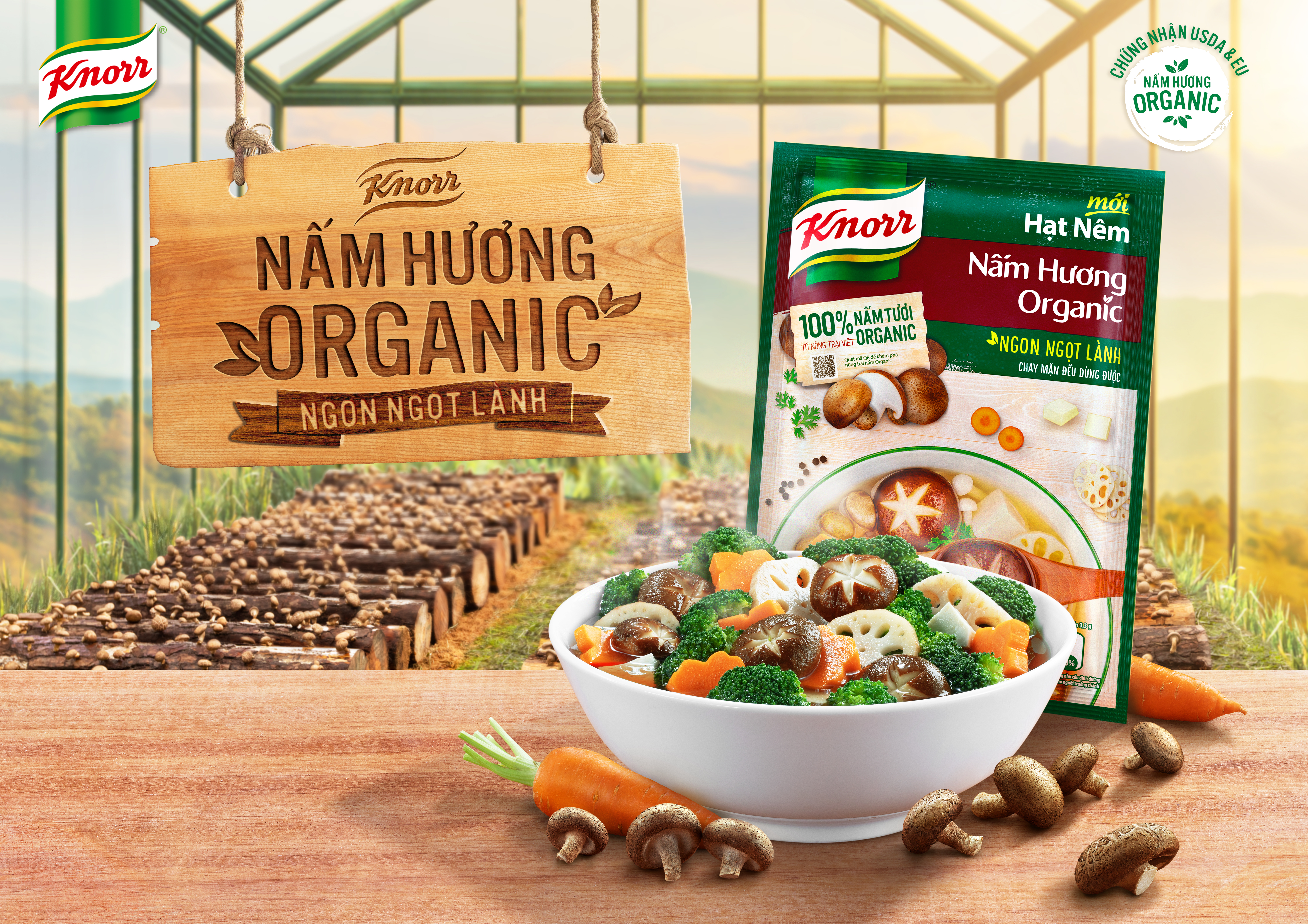 Launch strategy and comms for Unilever's entry into organic mushrooms