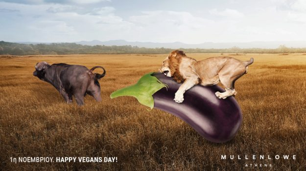 1st November. Happy Vegans Day