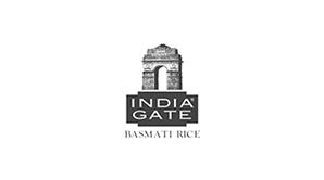 india gate logo