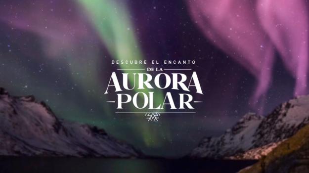 AURORA POLAR – TITANIUM