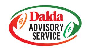 Dalda - Advisory Service