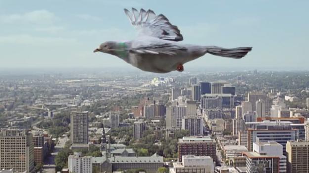 ZO SIETE: Nová kampaň pre leteckú spoločnosť