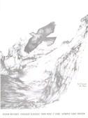 Olivier Messiaen: Catalogue D'Oiseaux - Piano (Volume 1)