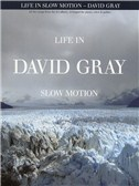 David Gray: Life In Slow Motion