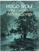 Wolf, Hugo : Livres de partitions de musique