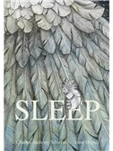 Sleep: Hardback Storybook