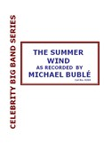 Michael Buble: The Summer Wind