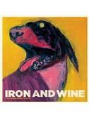 Iron & Wine: Flightless Bird, American Mouth