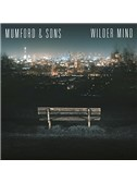 Mumford & Sons: Believe