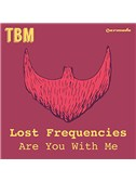 Lost Frequencies: Are You With Me